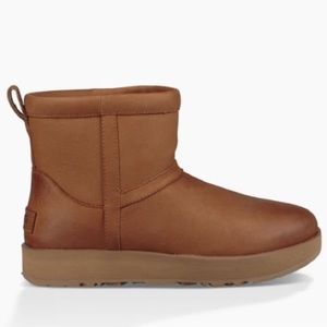 UGG Shoes - ❤️New Ugg Classic Chestnut Leather Mini boots Sz 7
